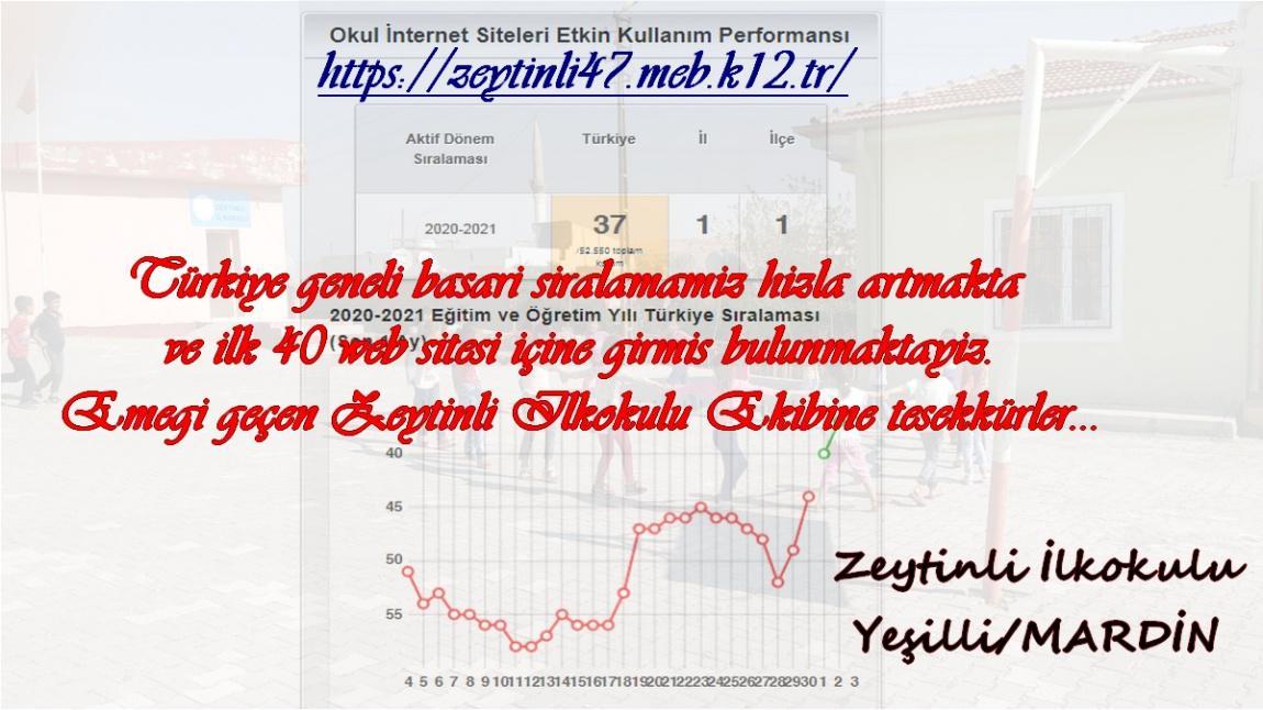 Web Sitesi Etkin Kullanma Performansımızı İlçe ve İl 1. si, Türkiye Genelinde Derece Olarak Tamamladık